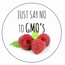 Just Say No To GMO's Button