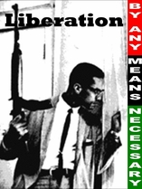 "Malcolm X: By Any Means Necessary Poster 11"" x 17"""