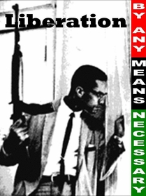 Malcolm X: By Any Means Necessary T-Shirt