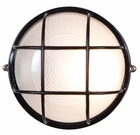 Access Nauticus Small Exterior Wall/Ceiling Light - Contemporary 20294