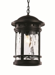 "Trans Globe 19"" Hanging Outdoor Light - Nautical 40376"