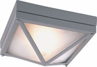 "Trans Globe 4"" Outdoor Ceiling Light - Contemporary 43301"