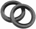 Kawasaki KLX110 Fork Seals