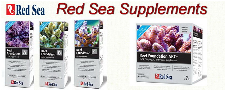 Red Sea Supplements