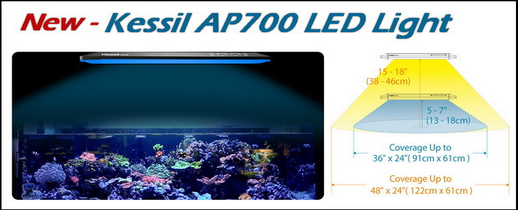 Kessil AP700 LED Lighting