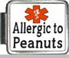 Allergice to Peanuts Medical Alert Photo Italian Charm