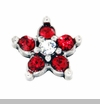 Red Crystal Star Floating Locket Charm