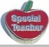 Special Teacher in Apple Heart Locket Charm