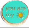 You Are my Sunshine Floating Heart Locket Charm