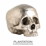 Cranio Metal Skull No. 3 | Polished Nickel