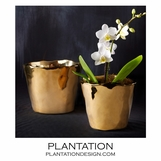 Gita Ceramic Vases Set | Gold