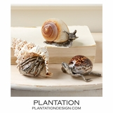 Marine Shell & Pewter Objects | No. 1
