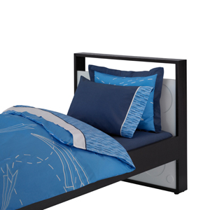 Blue Bedding & Decor