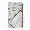 Fly By Reversible Silver Velvet Airplane Duvet
