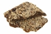 Boss Hog's Cinnamon Buttercrunch Toffee Flavored With Bacon - Click to Enlarge