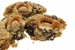 Chocolate Chip Pretzel Cookies Flavored With Bacon - 3pk - Click to Enlarge