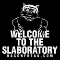 Welcome To The Slaboratory