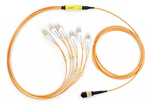 12-Fiber MTP/MPO to LC Fiber Optic Fanout Cable, Multimode OM1, Plenum