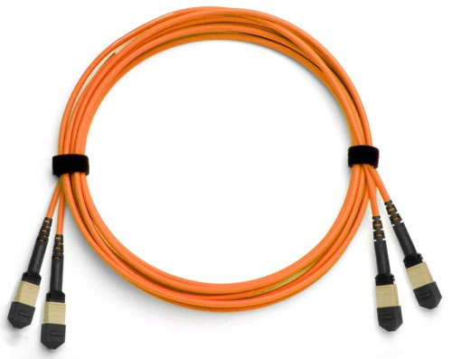 24-Fiber Dual MTP/MPO Fiber Optic Cable, Multimode OM2, Plenum