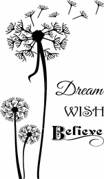 Dream Wish Believe