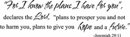 Religious Sayings - For I Know the Plans I Have For You