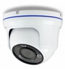 Weatherproof Ball Dome IR Fixed Megapixel Lens Exmor Color IP Camera
