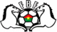 Burkina Faso National Soccer Team