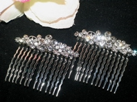 Anzia- Beautiful vine hair combs - set of 2