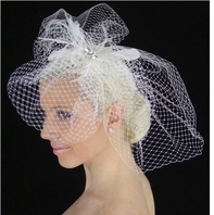 Ariella - GLAMOROUS Gorgeous bridal Birdcage veil with feathers