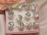 Ava-Elegant Clusters Rhinestone Hair Pins(set of 12)