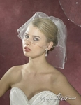 Beaded crystal edge bridal french cage blusher veil