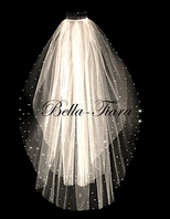 Beautiful 2 tier scattered crystal veil - off white - RENTAL