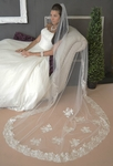 Beautiful Cathedral Lace Veil