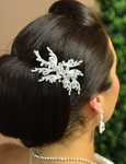 Terri - Designer Collection - Beautiful Crystal Hair comb