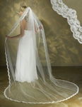 Beautiful lace edge beaded cathedral bridal veil