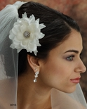 Hair Flowers,  cage veils, feather combs