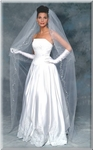 Cathedral beaded vine border bridal veil - SALE!!