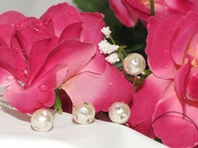 Elegant Pearl & Rhinestone Bridal Hair Pins<br><i>Set of 12</i> SPECIAL!!! two sets left