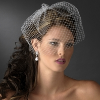 Elegant Russian Bird Cage Bridal Veil on Comb - SALE