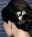 Elegant set of 3 bold crystal wedding hair pins -  - SPECIAL