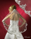 Lace Edge Ivory / silver Bridal Veil