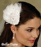 Luxurious Collection - Elegant Feather & Crystal Clip