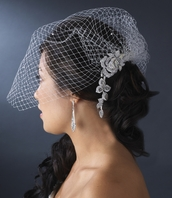Rose-Elegant bird cage veil with scattered Crystals - SALE!!