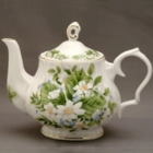 Dogwood Bone China Tea Pot