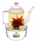 Glass Romeo Non-Drip Teapot with Warmer