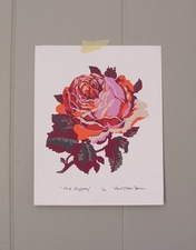 """Rose Clipping"" SOLD OUT"
