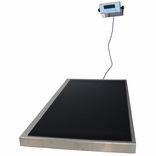 HealthOMeter 2842KL (Health O Meter) Vet Low Profile Platform Scale