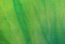 Nylon Spandex Seascape Tye Dye Fabric Green Sale