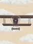 Vintage Plane II Stretched Art Personalized by Dish and Spoon - click to Enlarge