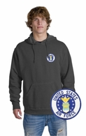 Air Force Patch Crest Hooded Sweatshirt